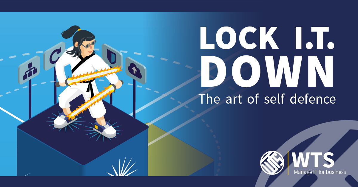 Lock IT Down - computers and the art of self defence